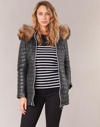 Kleidung Damen Daunenjacken Oakwood 61679 Schwarz