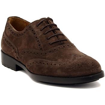 Schuhe Herren Richelieu Marco Ferretti NEWPORT BROWN Multicolore