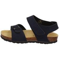 Schuhe Jungen Sandalen / Sandaletten Evoca EJ608A BLAU