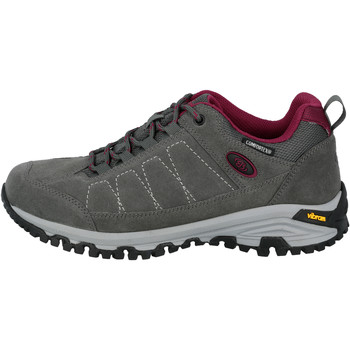 Schuhe Damen Wanderschuhe Brütting Mount Adams Low grau