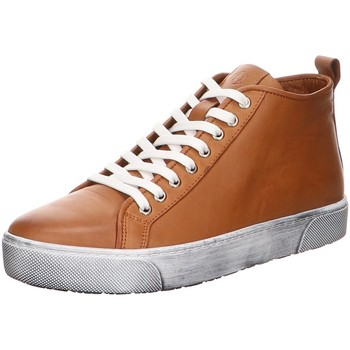 Schuhe Herren Sneaker High Andrea Conti 8820001 201 brown Other
