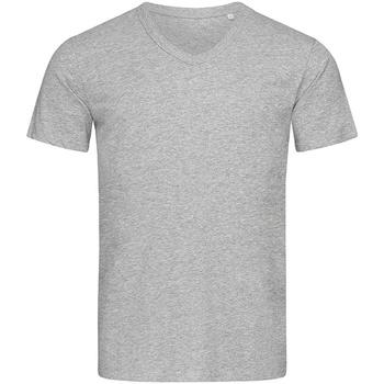 Kleidung Herren T-Shirts Stedman Stars  Grau meliert