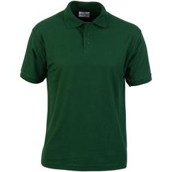 Kleidung Herren Polohemden Absolute Apparel  Flaschengrün