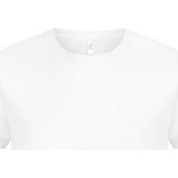 Kleidung Herren T-Shirts Casual Classics  Weiß