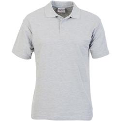 Kleidung Herren Polohemden Absolute Apparel  Sport Grau