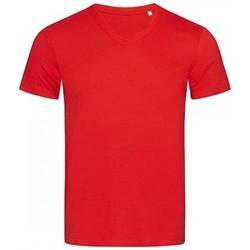 Kleidung Herren T-Shirts Stedman Stars  Karminrot