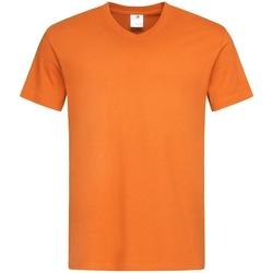 Kleidung Herren T-Shirts Stedman  Orange