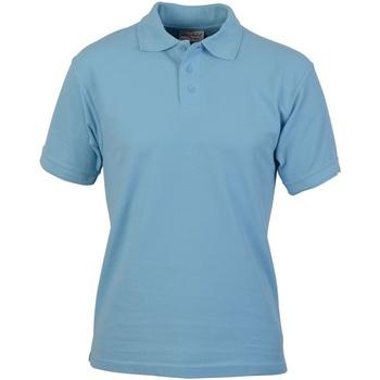 Kleidung Herren Polohemden Absolute Apparel  Hellblau