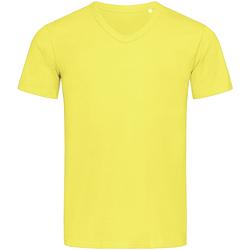 Kleidung Herren T-Shirts Stedman Stars  Gelb