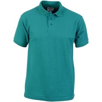 Kleidung Herren Polohemden Absolute Apparel  Smaragd