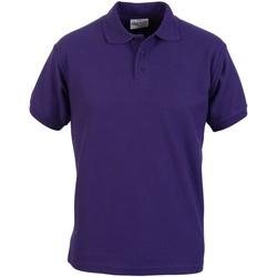 Kleidung Herren Polohemden Absolute Apparel  Violett
