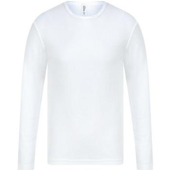 Kleidung Herren Langarmshirts Absolute Apparel  Weiß
