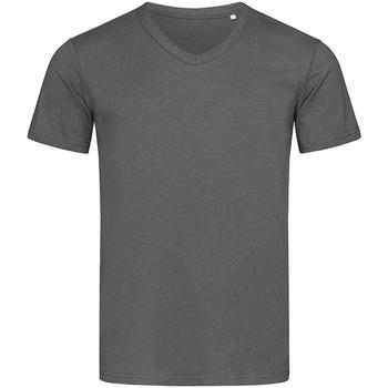 Kleidung Herren T-Shirts Stedman Stars  Schiefergrau