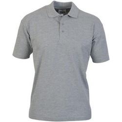 Kleidung Herren Polohemden Casual Classics  Sport Grau