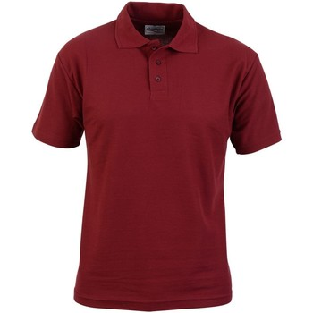Kleidung Herren Polohemden Absolute Apparel  Burgunder
