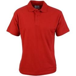 Kleidung Herren Polohemden Absolute Apparel  Rot