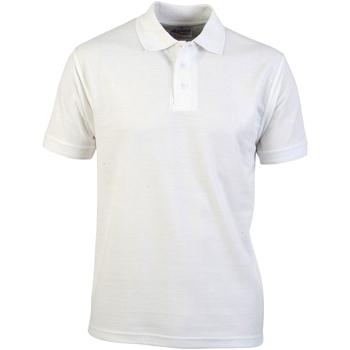 Kleidung Herren Polohemden Absolute Apparel  Weiß