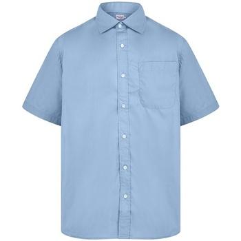 Kleidung Herren Kurzärmelige Hemden Absolute Apparel  Hellblau