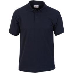 Kleidung Herren Polohemden Absolute Apparel  Marineblau