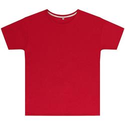Kleidung Kinder T-Shirts Sg SGTEEK Rot