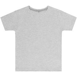 Kleidung Kinder T-Shirts Sg SGTEEK Aschegrau