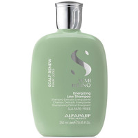 Beauty Damen Shampoo Alfaparf Semi Di Lino Scalp Renew Energizing Shampoo  250 ml
