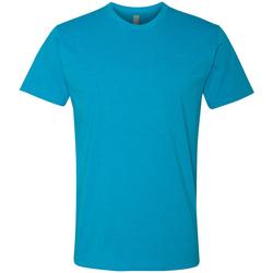 Kleidung Herren T-Shirts Next Level NX6210 Türkis