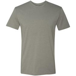 Kleidung Herren T-Shirts Next Level NX6210 Steingrau
