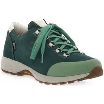 Schuhe Damen Wanderschuhe Lomer BALI MTX PINE Verde