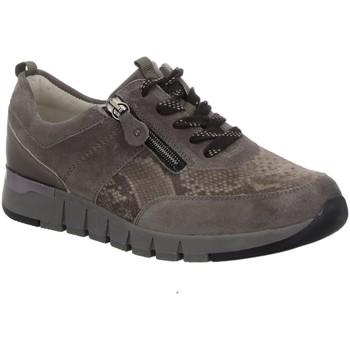 Schuhe Damen Derby-Schuhe & Richelieu Waldläufer Schnuerschuhe VELOUR AMAZONA VEL. MARAK 908009 405 410 beige