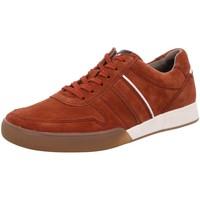 Schuhe Herren Sneaker Low Pius Gabor Schnuerschuhe NV 10081005 rot
