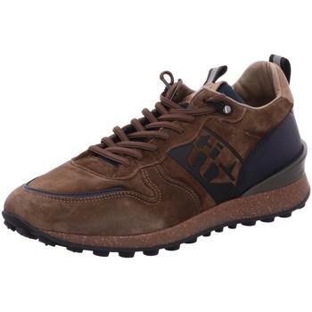 Schuhe Herren Sneaker Low Cetti Schnuerschuhe SCHNÜRER C-1235 KAKI grün