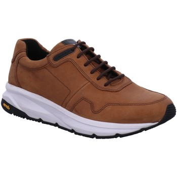Schuhe Herren Sneaker Low Pius Gabor Schnuerschuhe NV 10091002 braun
