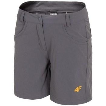 Kleidung Damen Shorts / Bermudas 4F SKDF060 Grau