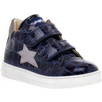 Schuhe Mädchen Sneaker Low Naturino FALCOTTO 2C06 SASHA BLEU Blu