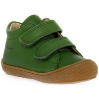 Schuhe Jungen Sneaker Low Naturino F06 COCOON VL NAPPA KAKY Verde