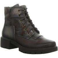 Schuhe Damen Boots Laura Vita Stiefeletten IDCEAO 05 CHOCO schwarz