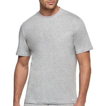 Kleidung Herren T-Shirts Impetus 1361001 507 Grau
