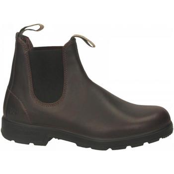 Schuhe Herren Boots Blundstone 150 ANNIVERSARY BOOT auburn