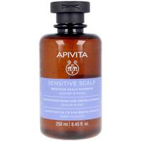 Beauty Shampoo Apivita Sensitive Scalp Shampoo Lavender & Honey
