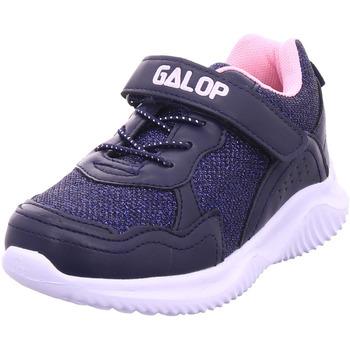 Schuhe Sneaker Hengst - L21802.401 blau