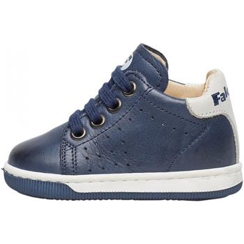 Schuhe Jungen Sneaker Falcotto - Polacchino blu ADAM-0C02 BLU