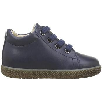 Schuhe Jungen Sneaker Falcotto - Polacchino blu ANEMONE-0C02 BLU