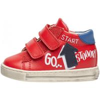 Schuhe Jungen Sneaker Falcotto - Polacchino rosso/azz/blu HOGWA-1H02 ROSSO