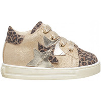 Schuhe Jungen Sneaker Falcotto - Polacchino tortora/plt QUIRREL-1D22 MARRONE