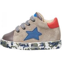 Schuhe Jungen Sneaker Falcotto - Sneaker grigio SASHA-1B03 GRIGIO