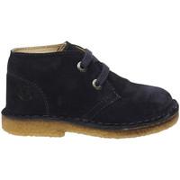 Schuhe Jungen Boots Naturino - Polacchino blu MILKY-0C01 BLU