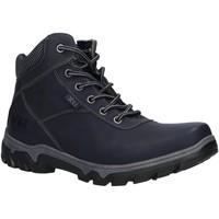 Schuhe Damen Wanderschuhe Xti 49252 Azul