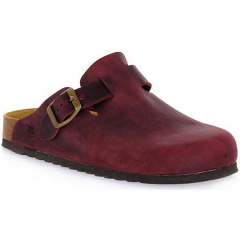 Schuhe Pantoletten / Clogs Bioline VINO INGRASSATO Rosso