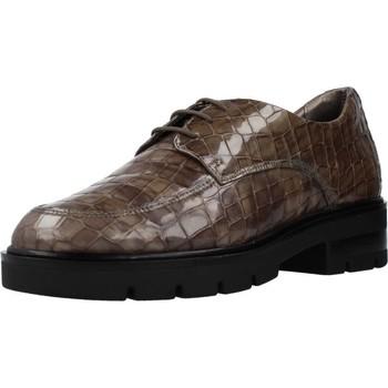 Schuhe Damen Derby-Schuhe & Richelieu 24 Hrs 24751 Brown